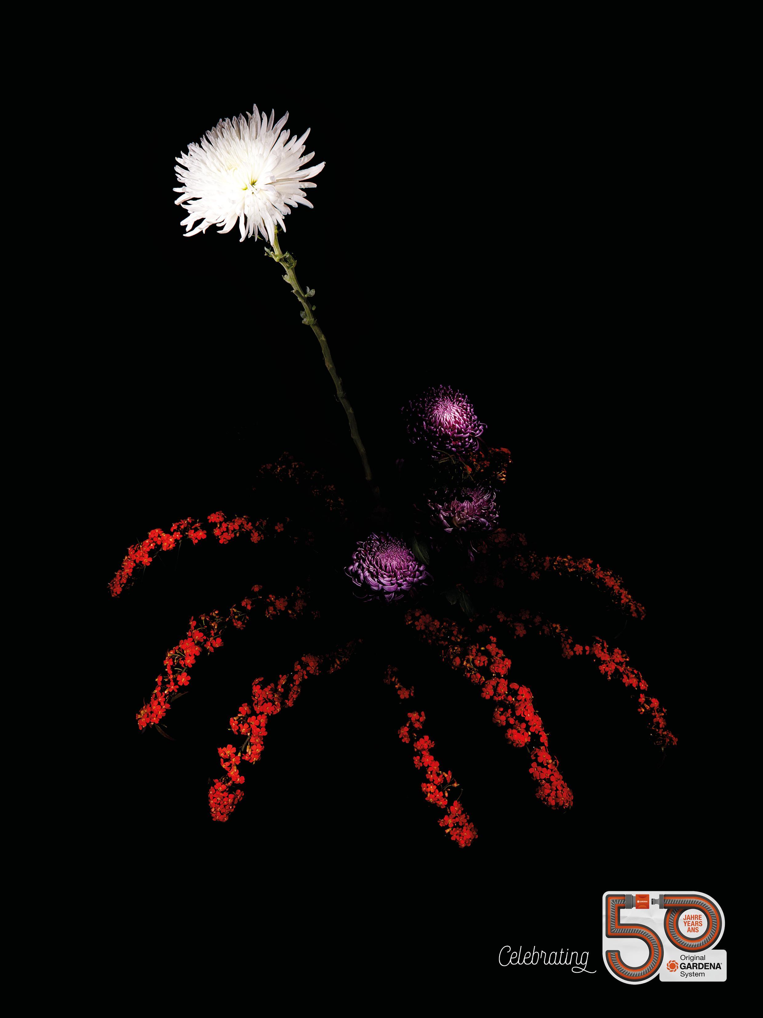 Gardena Print Ad - Flower Fireworks