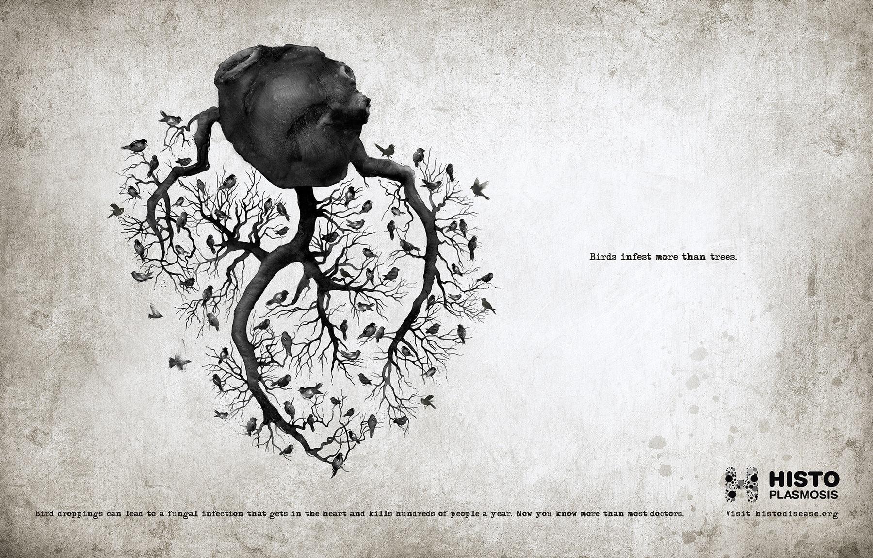 Histoplasmosis Awareness Print Ad -  Heart