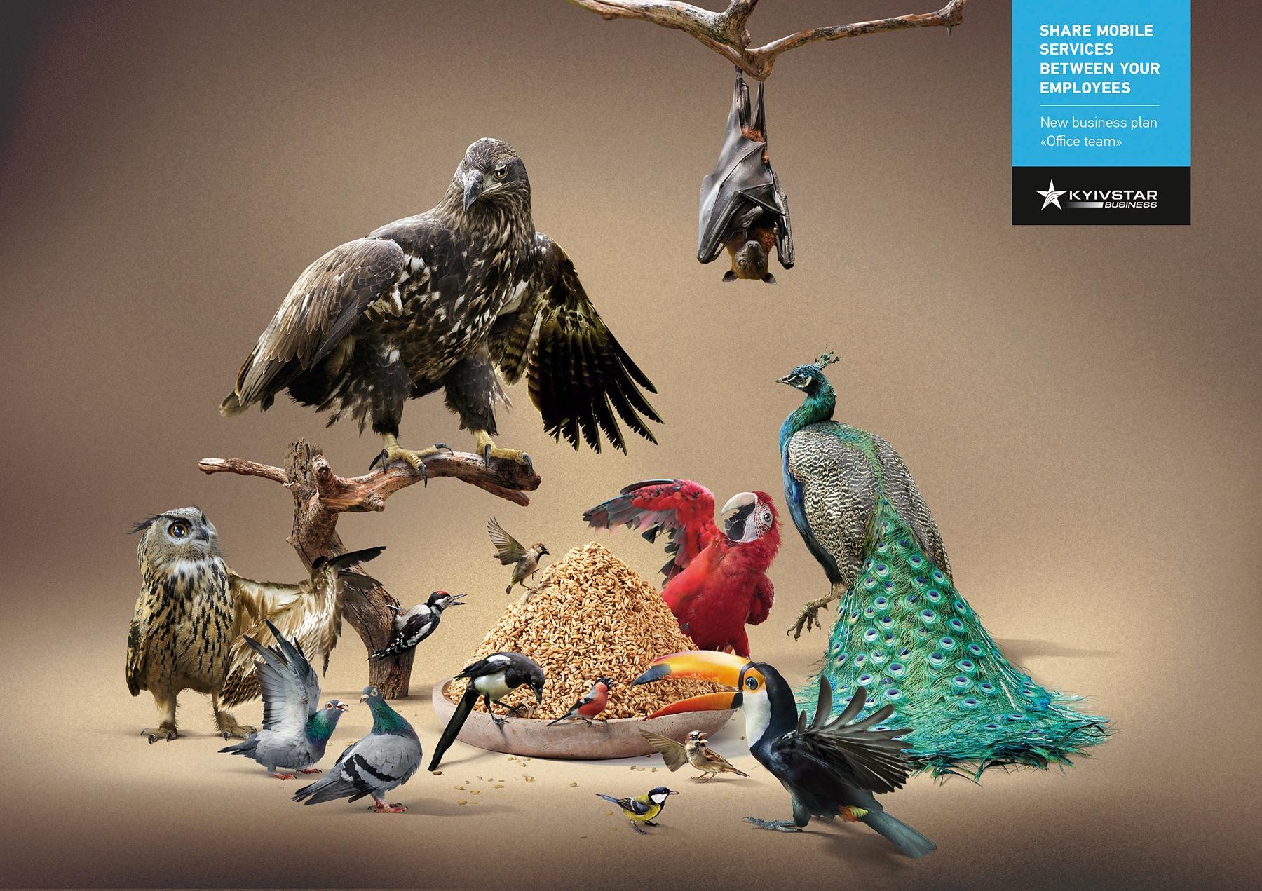 Kyivstar Print Ad -  Shared birdfeeder