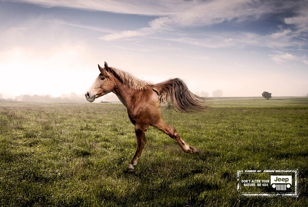 Jeep Print Advert By Paistudio Horse Ads Of The World
