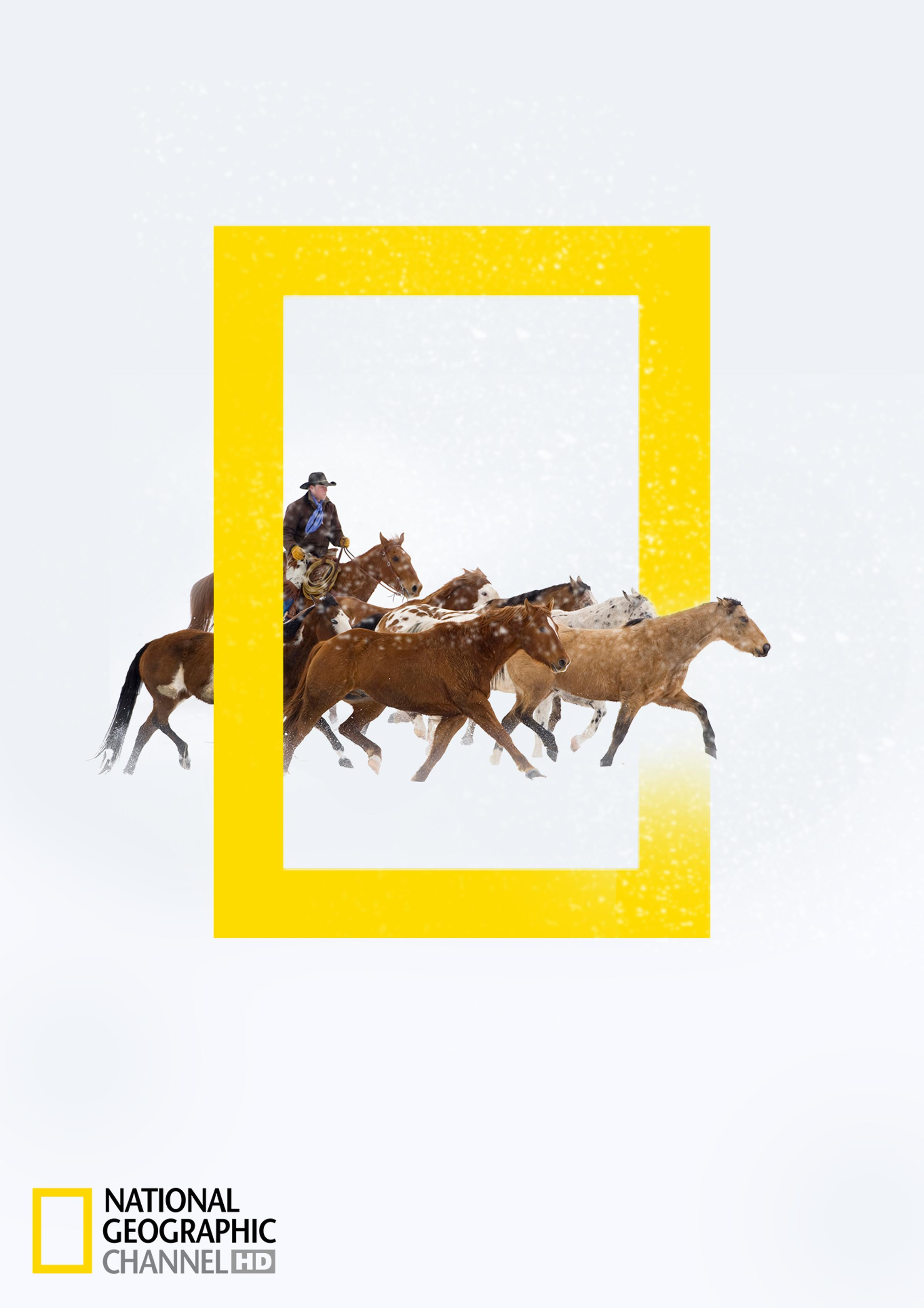 National Geographic Print Ad - National Geographic HD Channel winter programs - Horses