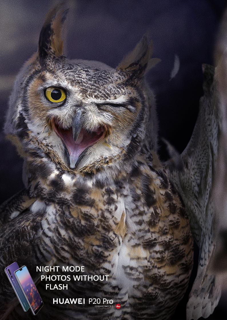 Huawei Print Ad - Night Mode Photos Without Flash - Owl