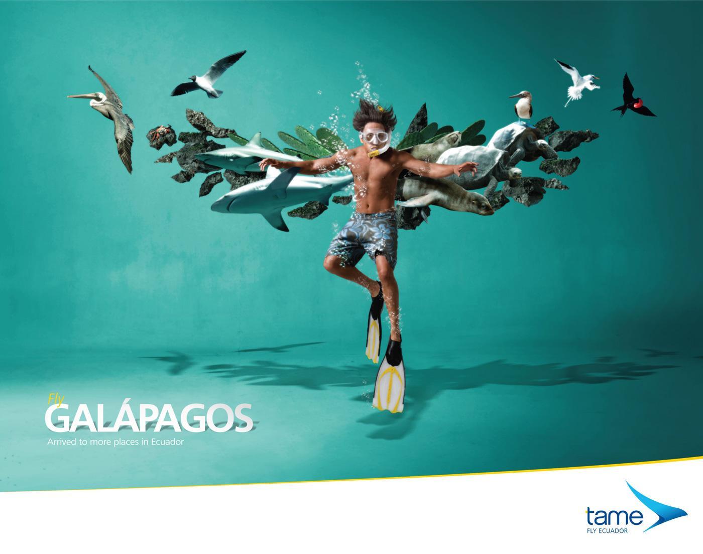 Tame Ecuador Airlines Print Ad -  Fly Galápagos