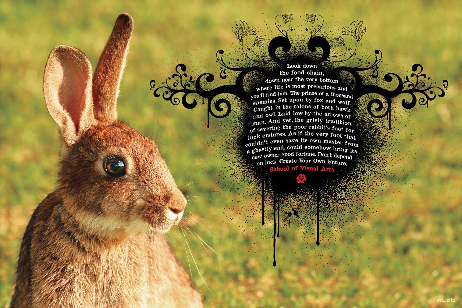 School of Visual Arts Print Ad -  Don't Depend On Luck, Rabbit