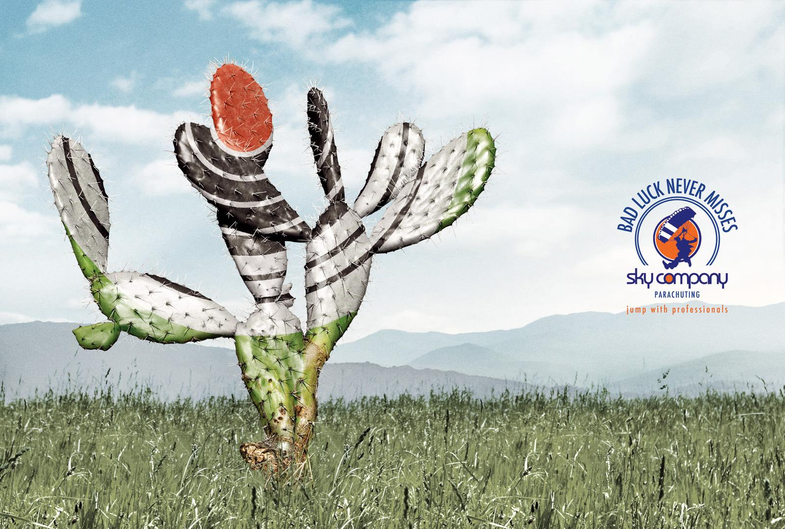 Sky Company Skydiving Print Ad -  Target, Cactus