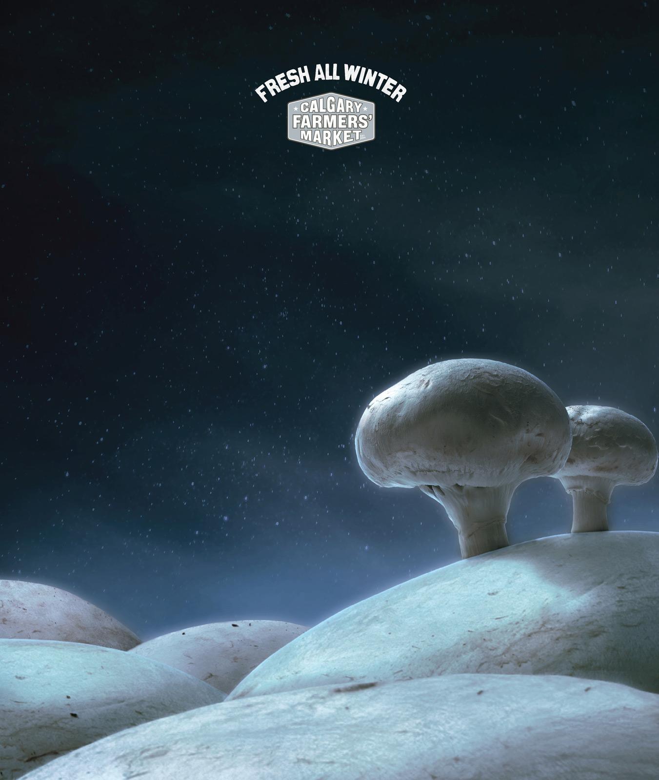 Calgary Farmers' Market Print Ad -  Mushrooms