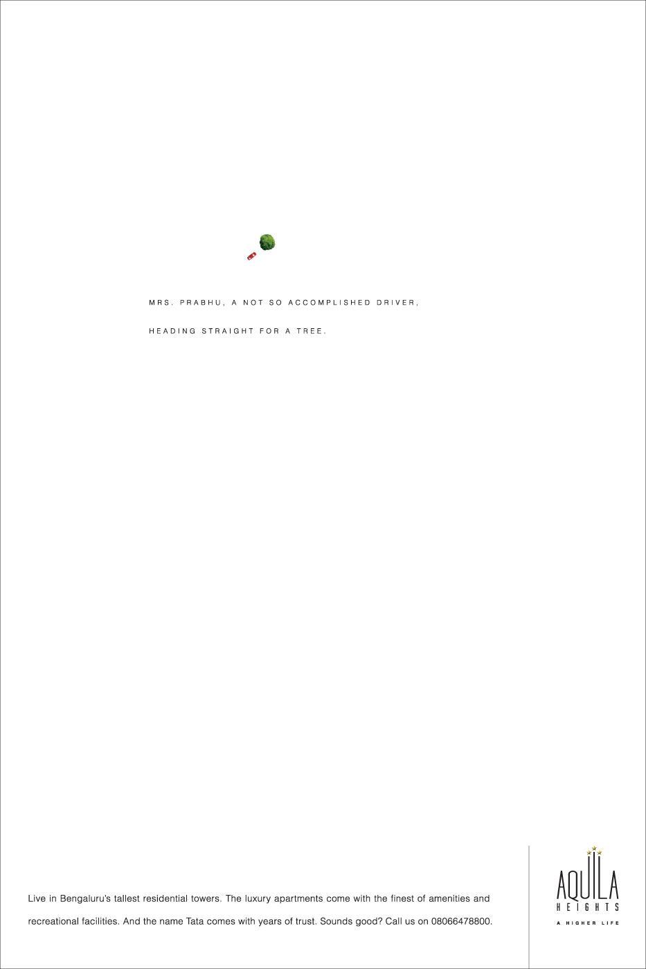 Aquila Heights Print Ad -  Tree