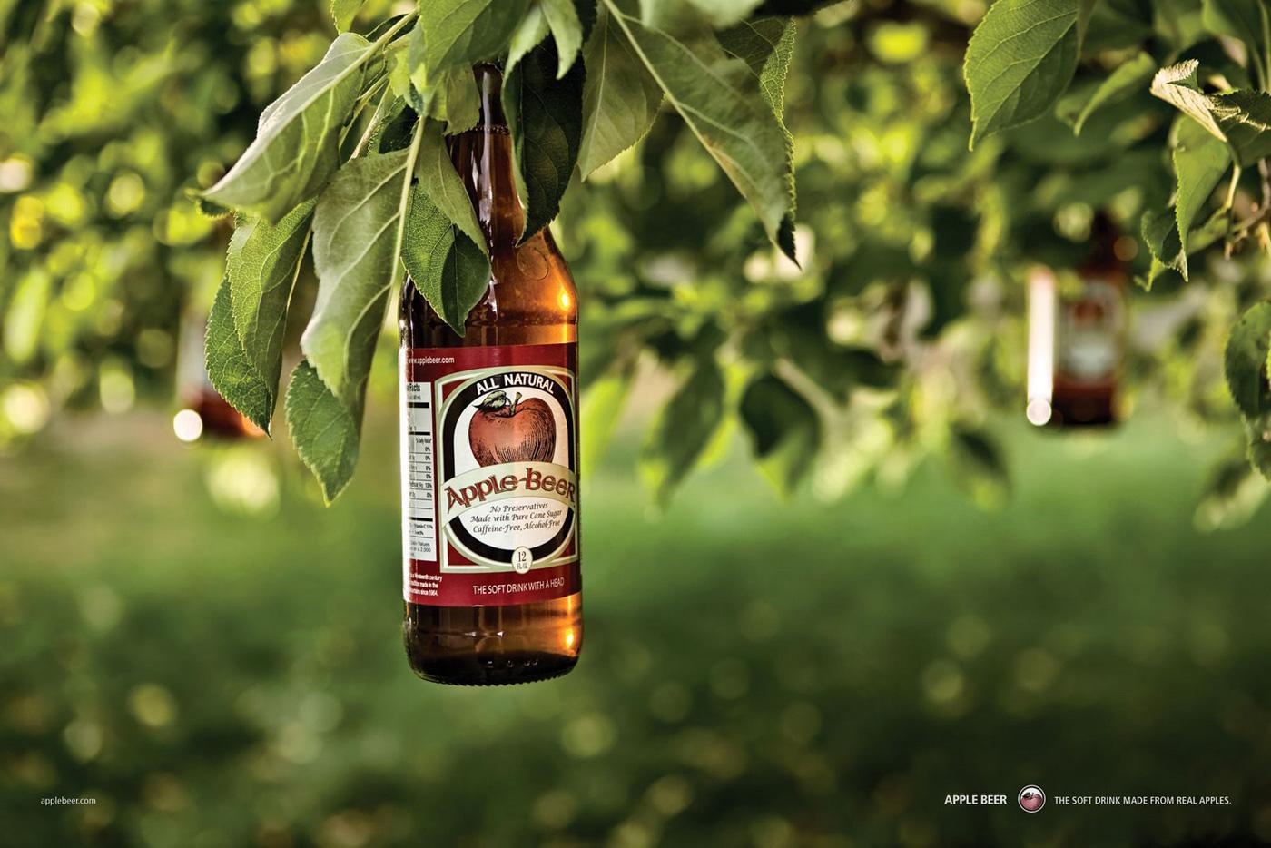 Apple Beer Print Ad -  Tree