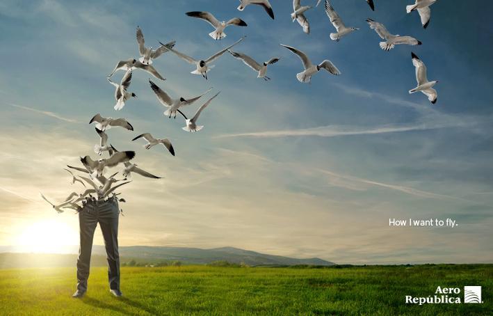 Aero República Print Ad -  Seagulls
