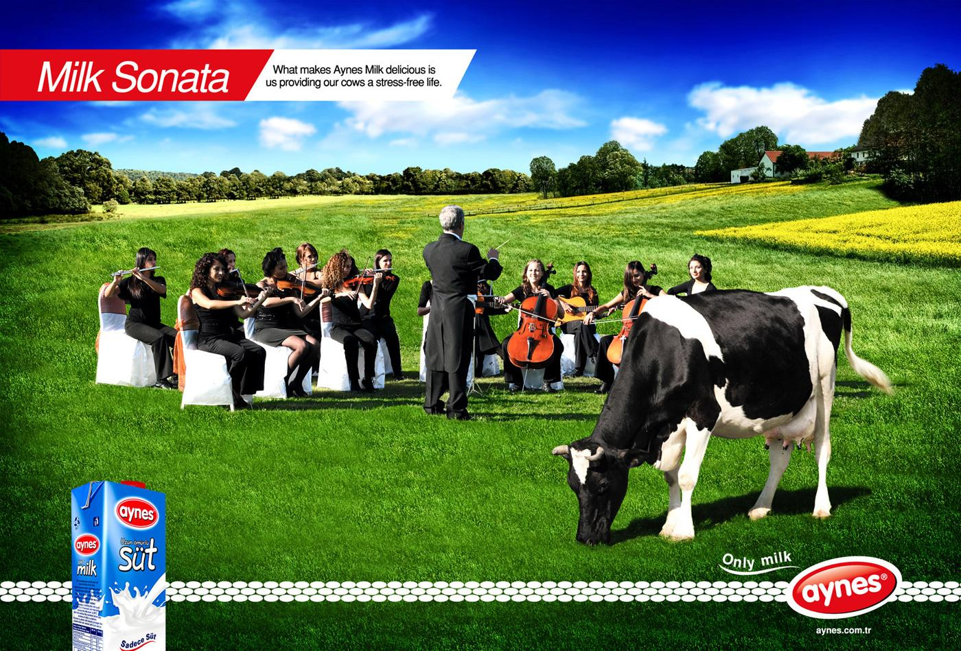 Aynes Print Ad -  Milk sonata