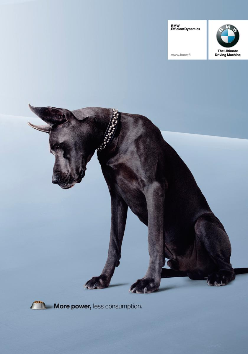 BMW Print Ad -  Dog