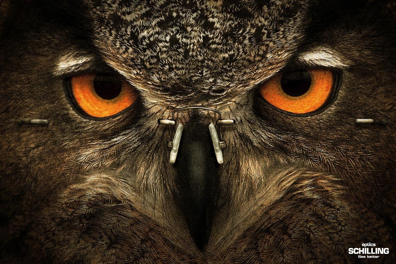 Ópticas Schilling Print Ad -  Owl