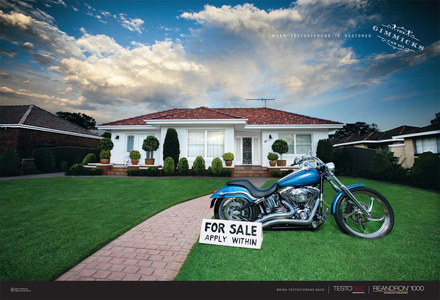Bayer Print Ad -  Harley