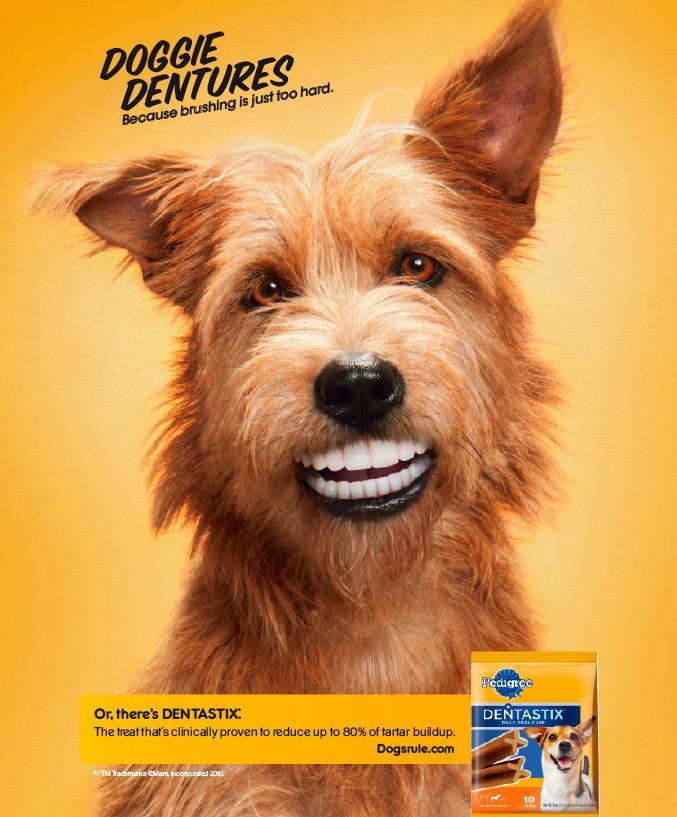 pedigree dentastix print advert by tbwa doggie dentures ads of