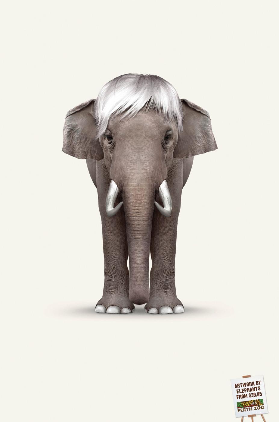 Perth Zoo Print Ad -  Elephant Art - Warhol