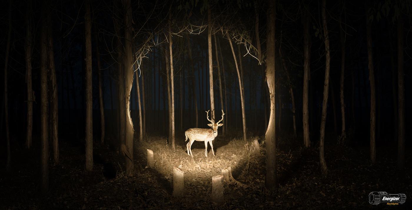 Energizer Print Ad -  Deer