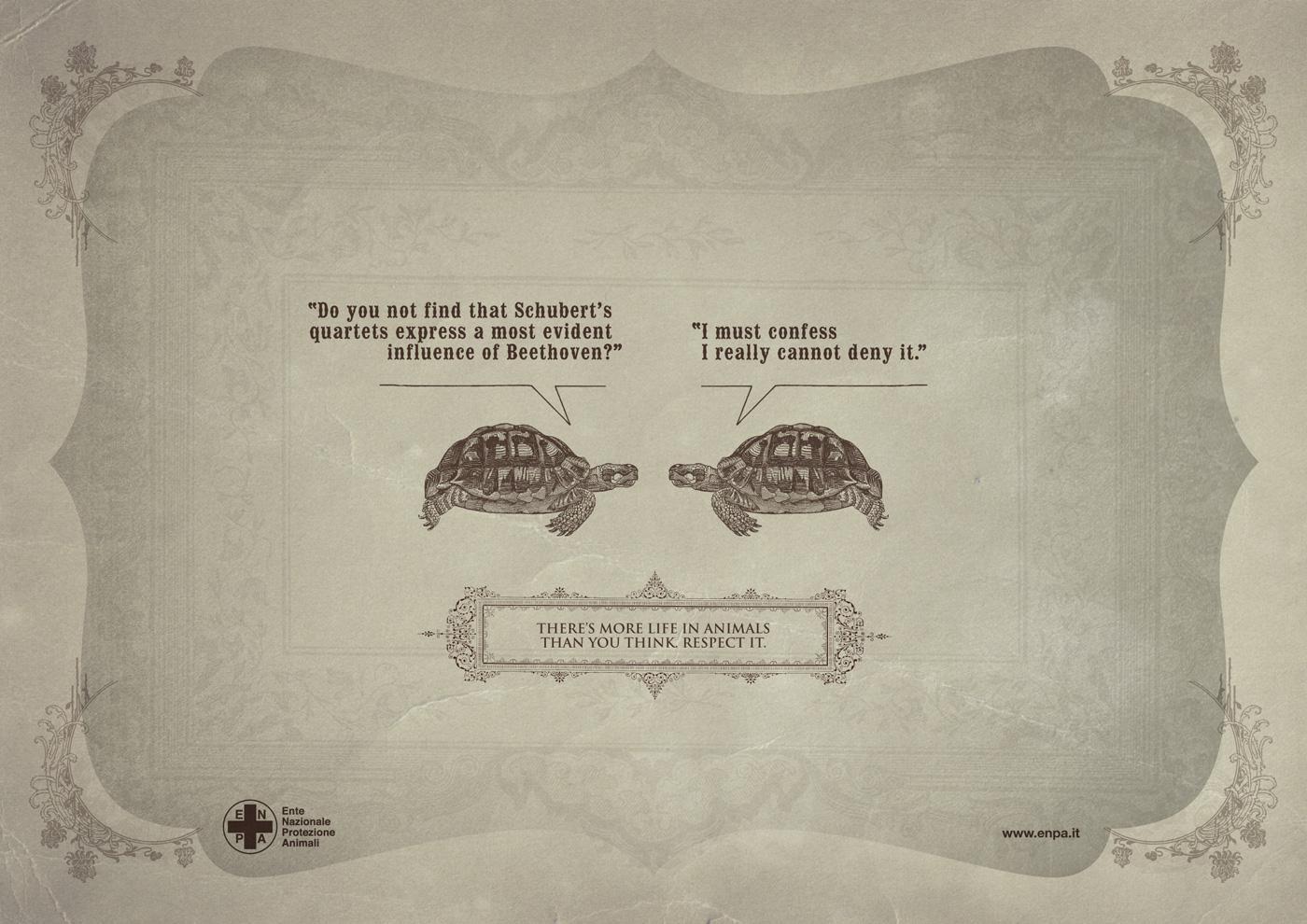 ENPA Print Ad -  Smart Creatures, Turtle