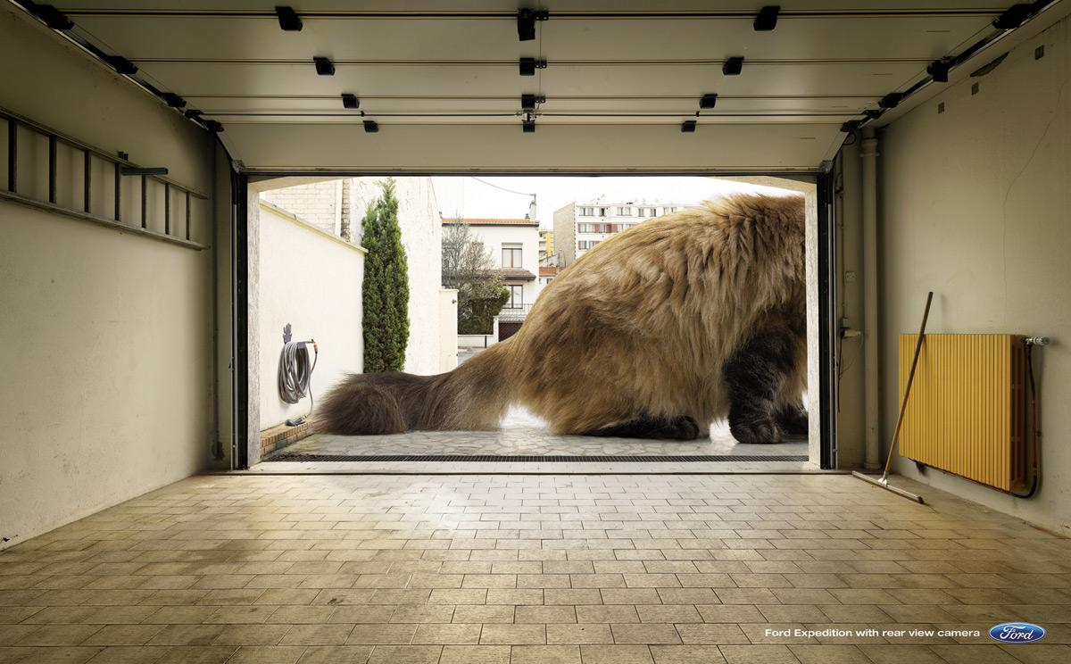 Ford Print Ad -  Kitten