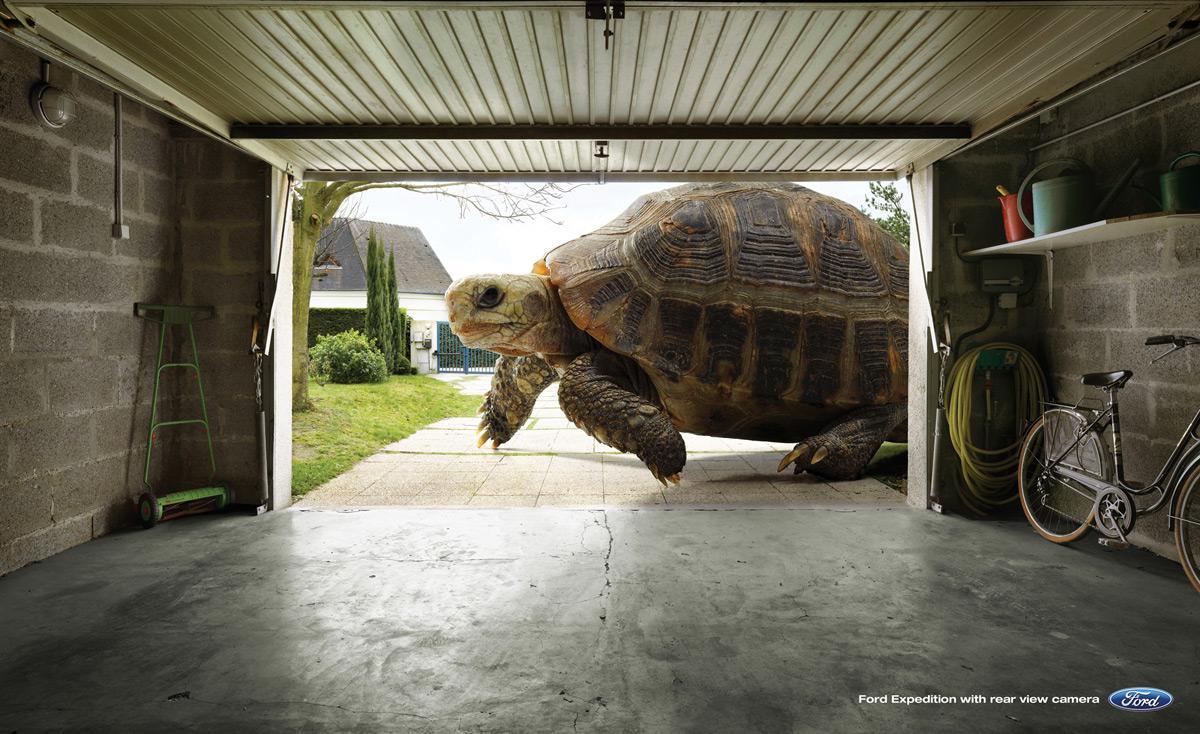 Ford Print Ad -  Tortoise