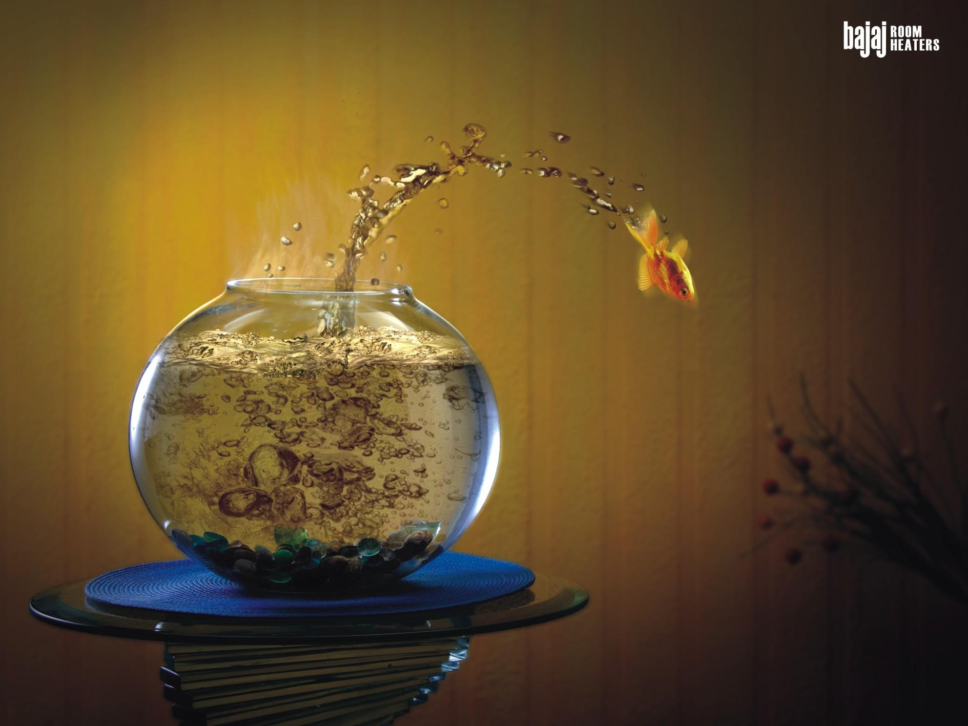 Bajaj Print Ad -  Fish