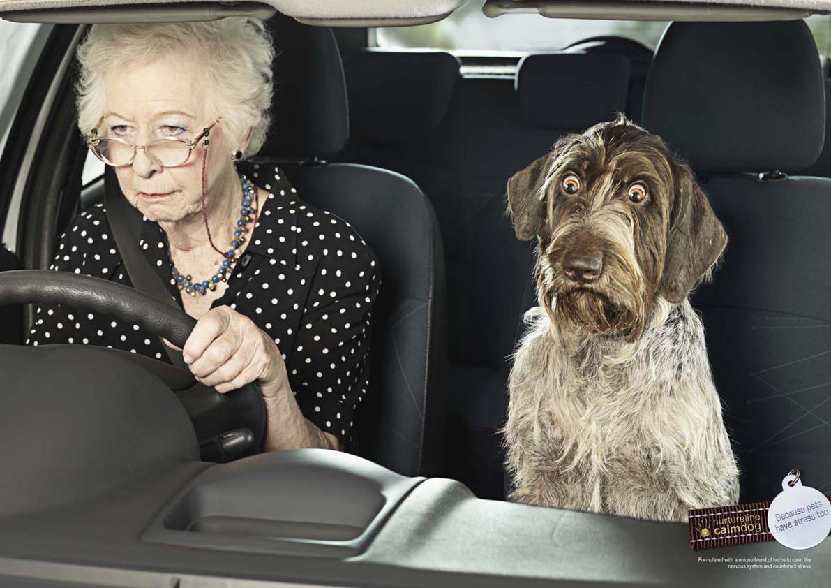Calmdog Print Ad -  Granny