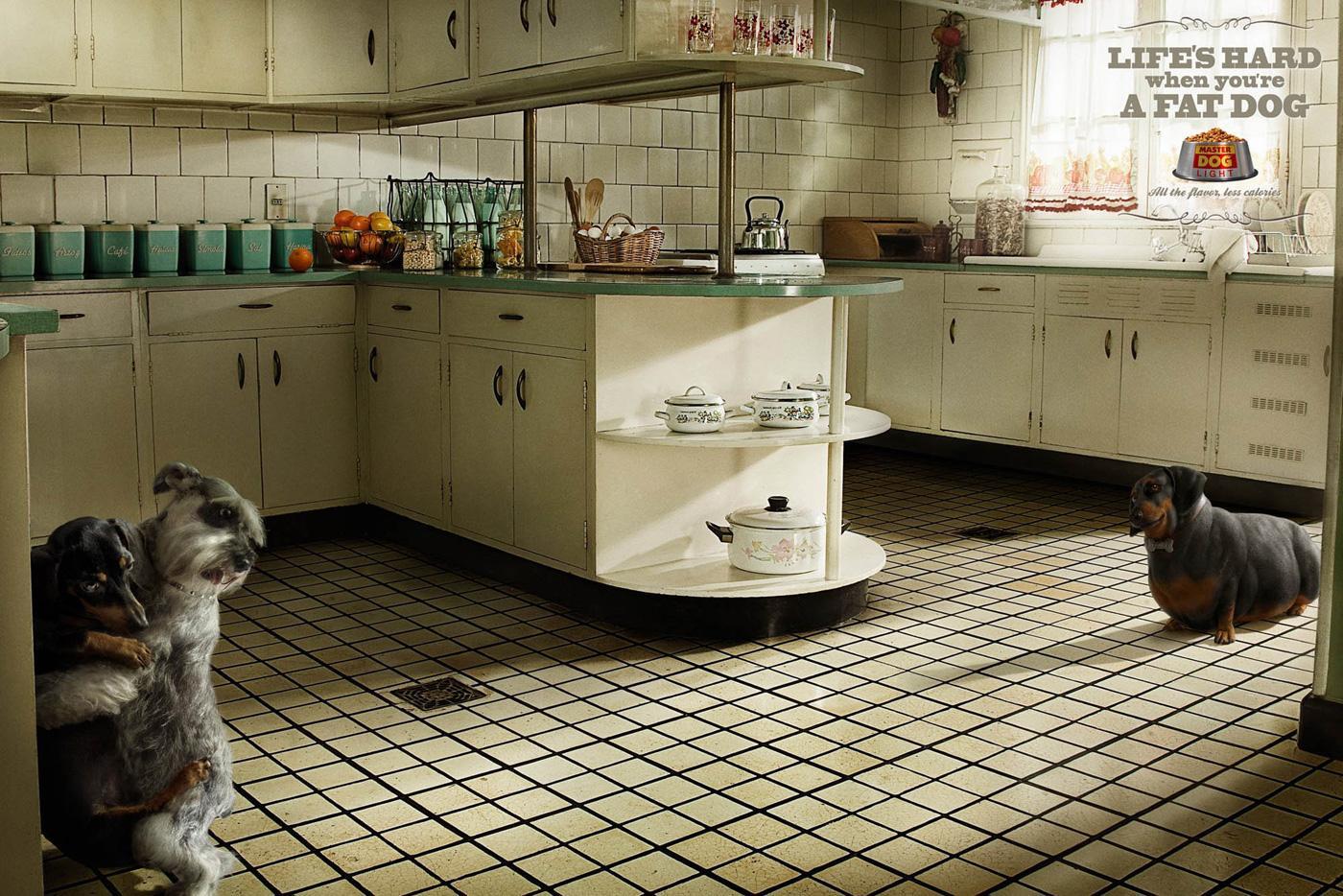 Master Dog Print Ad -  Kitchen