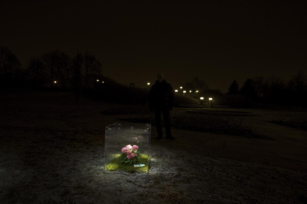 Master Green Ambient Ad -  Flowers