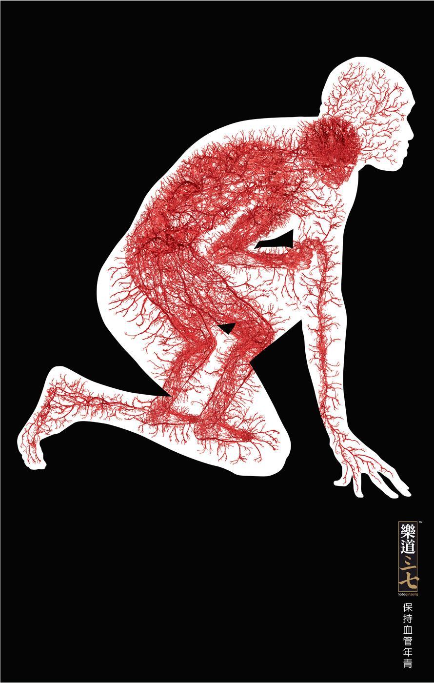 Notoginseng Print Ad -  Blood vessels, 3