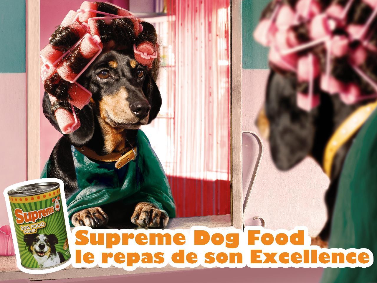 Supreme Dog Food Print Ad -  Bigoudis