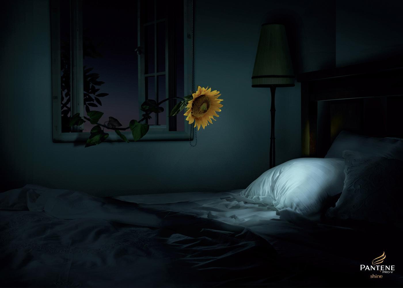 Pantene Print Ad -  Sunflower