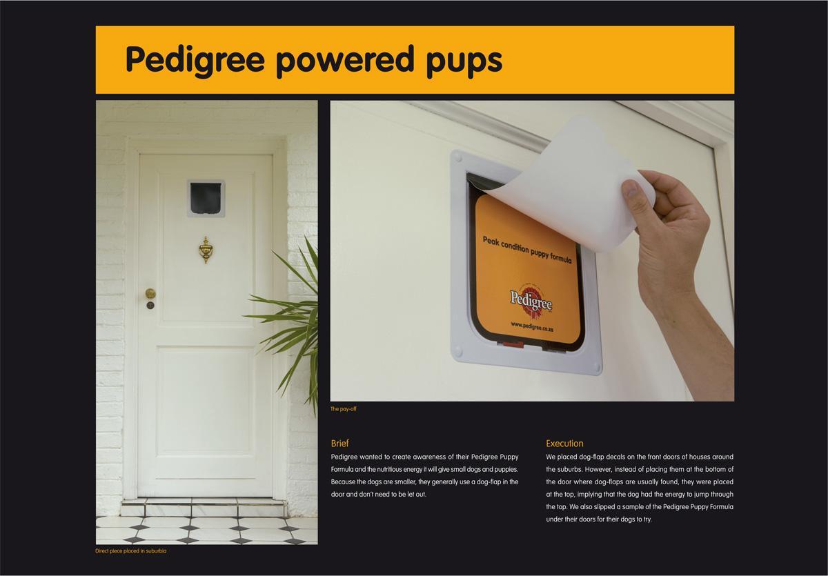 Pedigree Ambient Ad -  High dog-flap