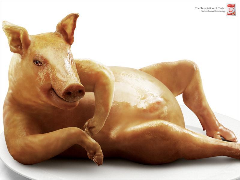 Rachachuros Print Ad -  Pig