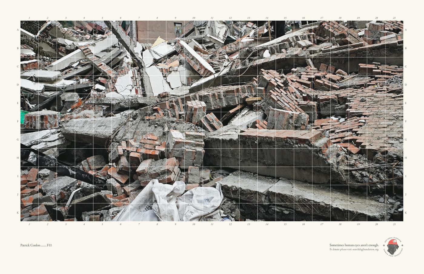 National Disaster Search Dog Foundation Print Ad -  Rubble, 1