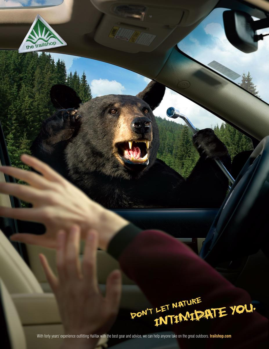 Trailshop Print Ad -  Bear