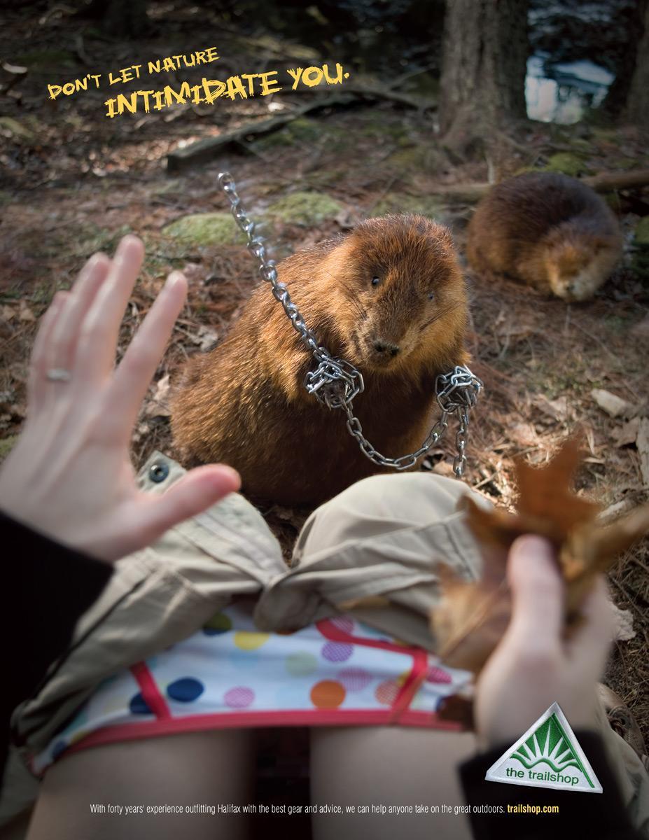 Trailshop Print Ad -  Beaver