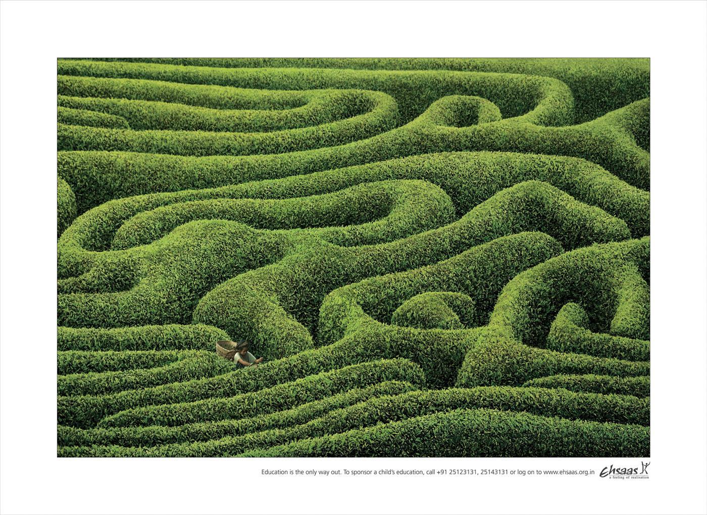 Ehsaas Print Ad -  Tea Estate