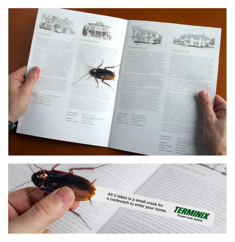 Terminix Direct Ad -  Roach