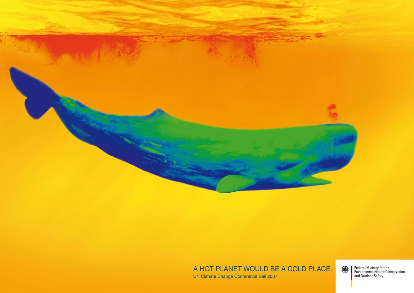 Federal Ministry for the Environment Print Ad -  Whale