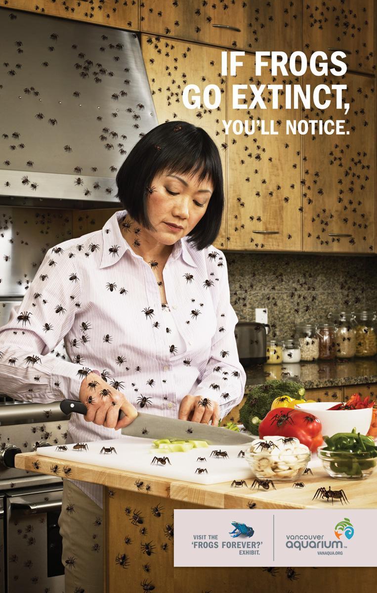 Vancouver Aquarium Print Ad -  Kitchen