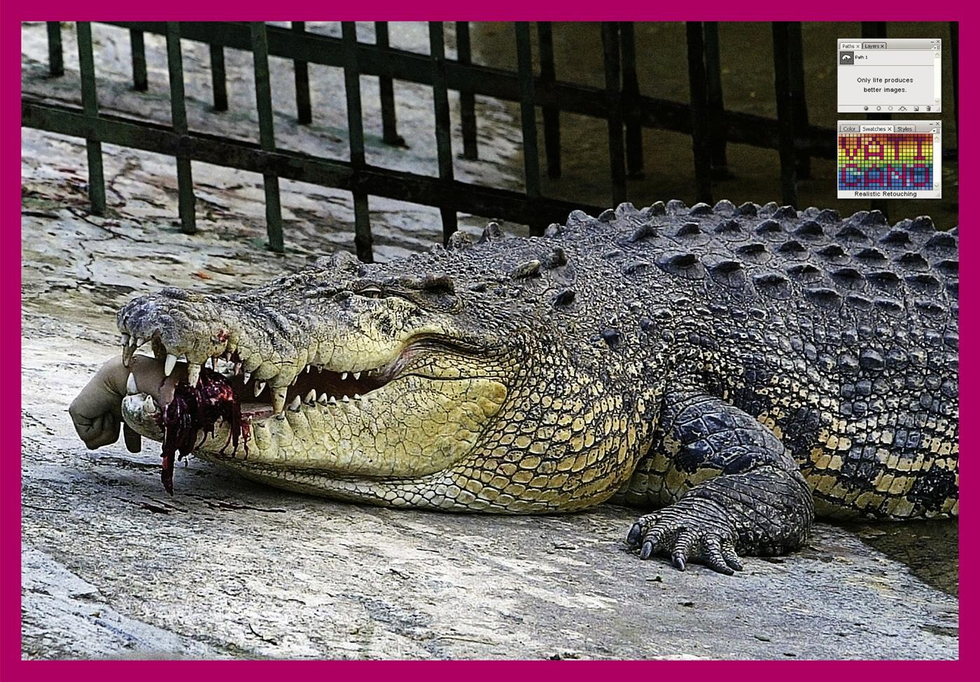 Vaticano Print Ad -  Crocodile