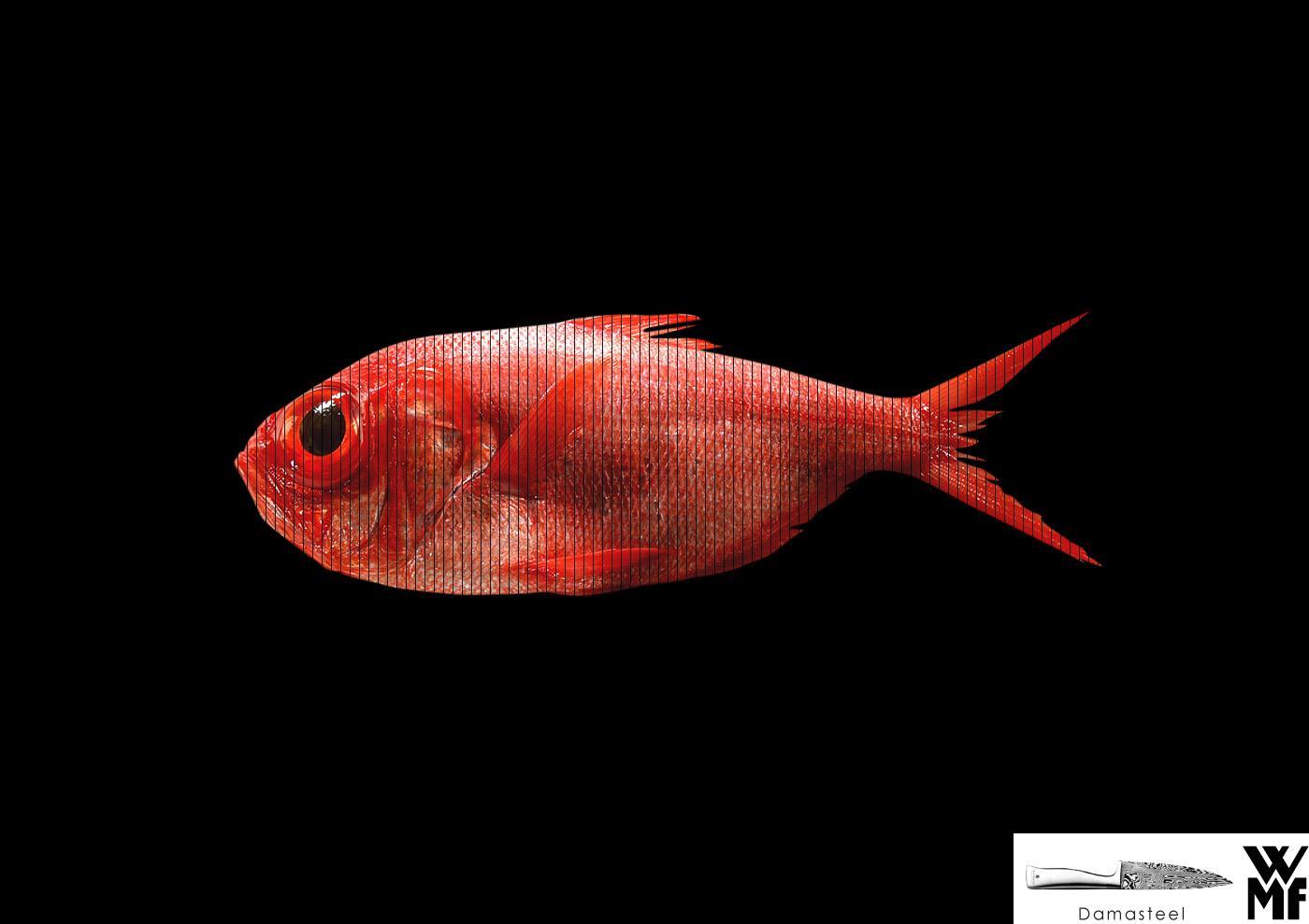 WMF Print Ad -  Fish