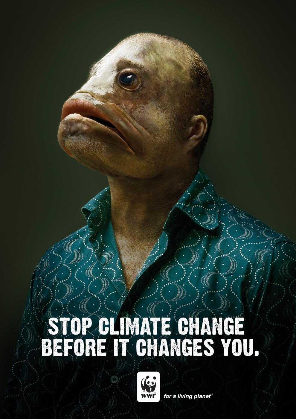 WWF Print Ad -  Fish
