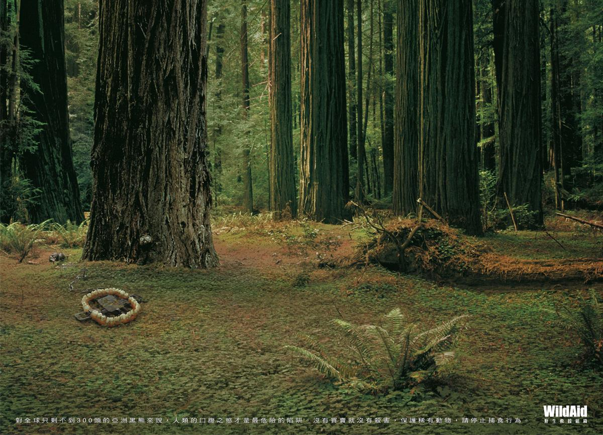 WildAid Print Ad -  Black Bear