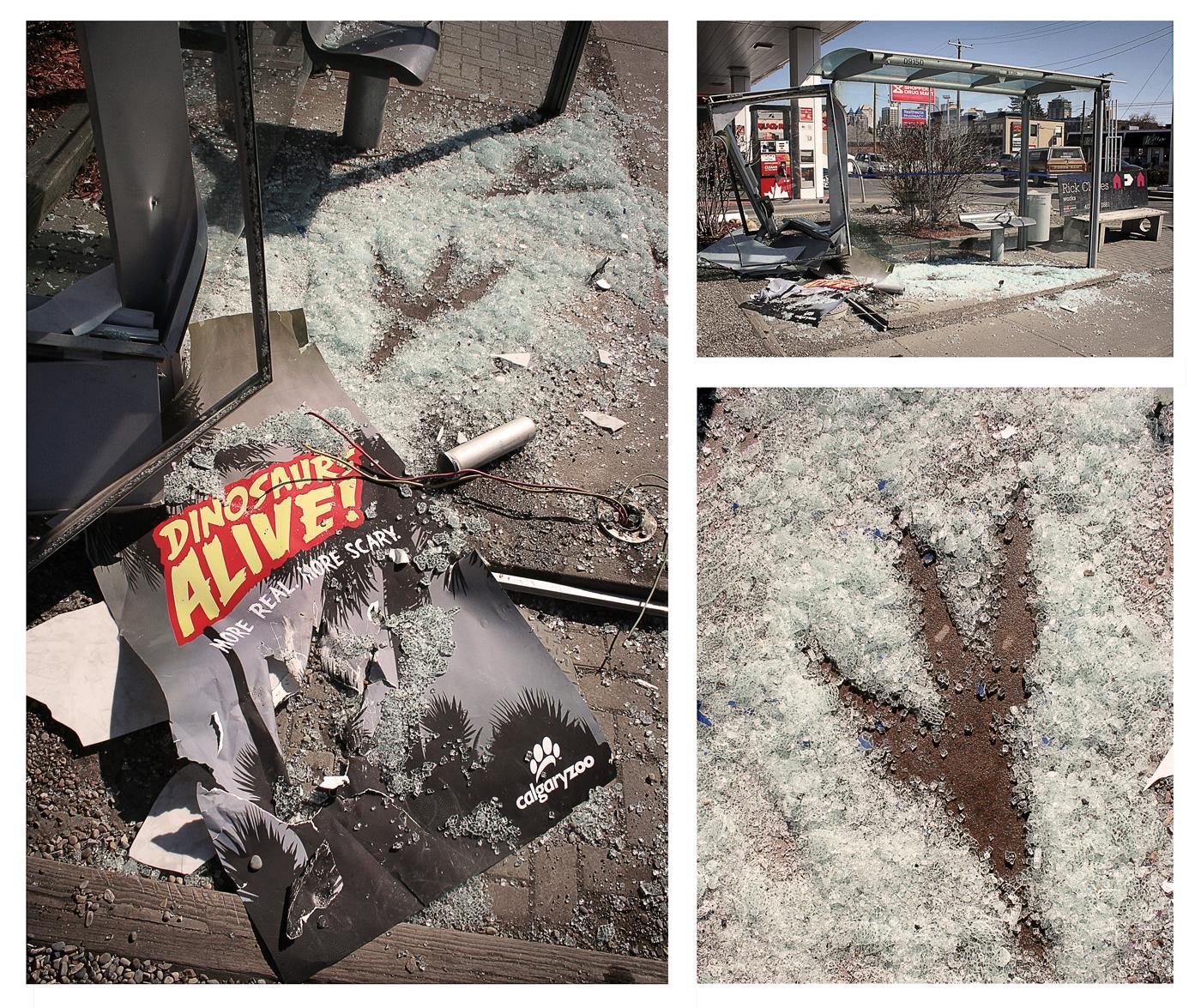 Calgary Zoo Ambient Ad -  Dino Destruction