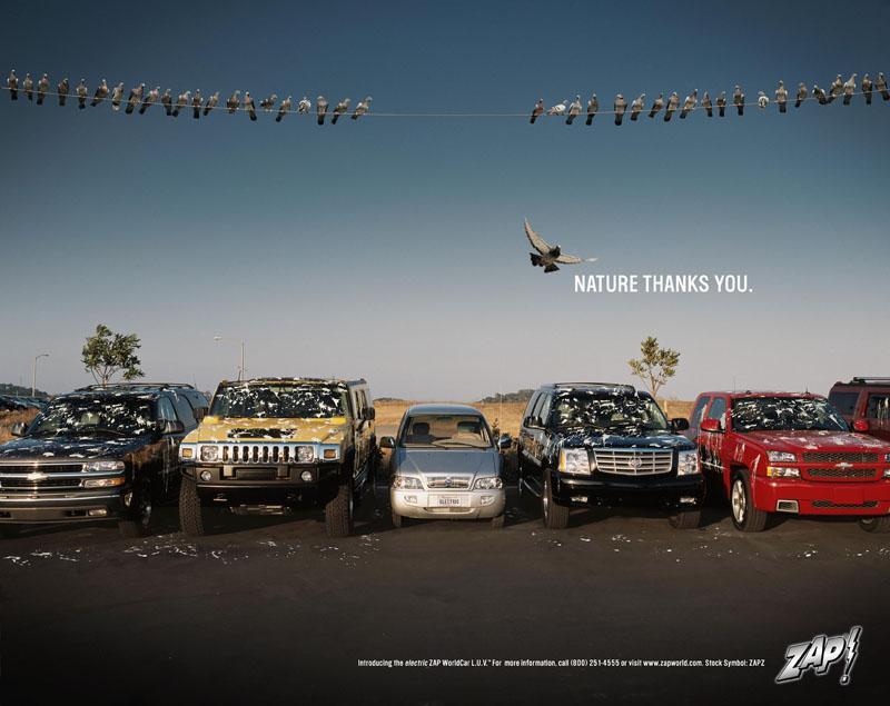 Zap Print Ad -  Birds