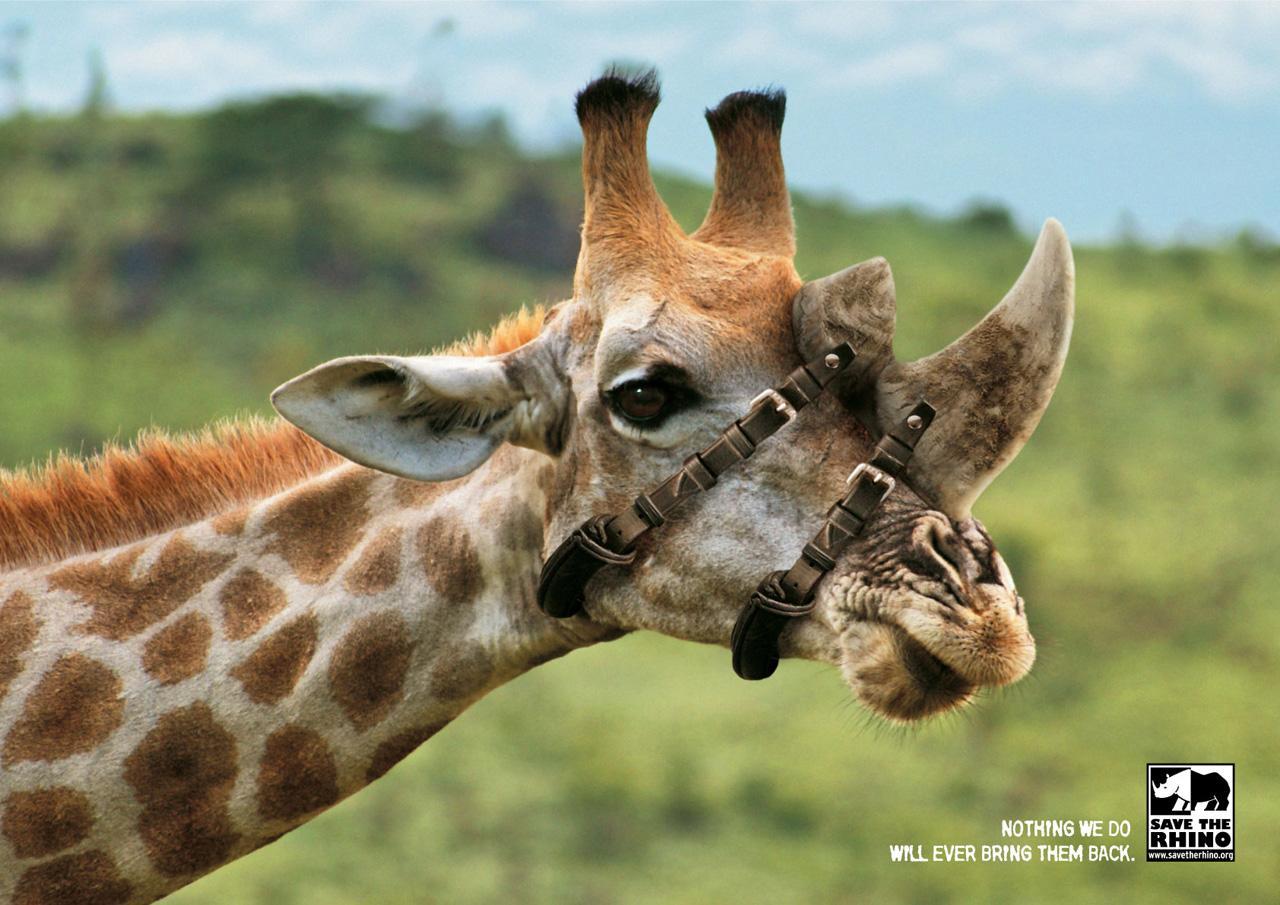 Save the Rhino Print Ad -  Giraffe