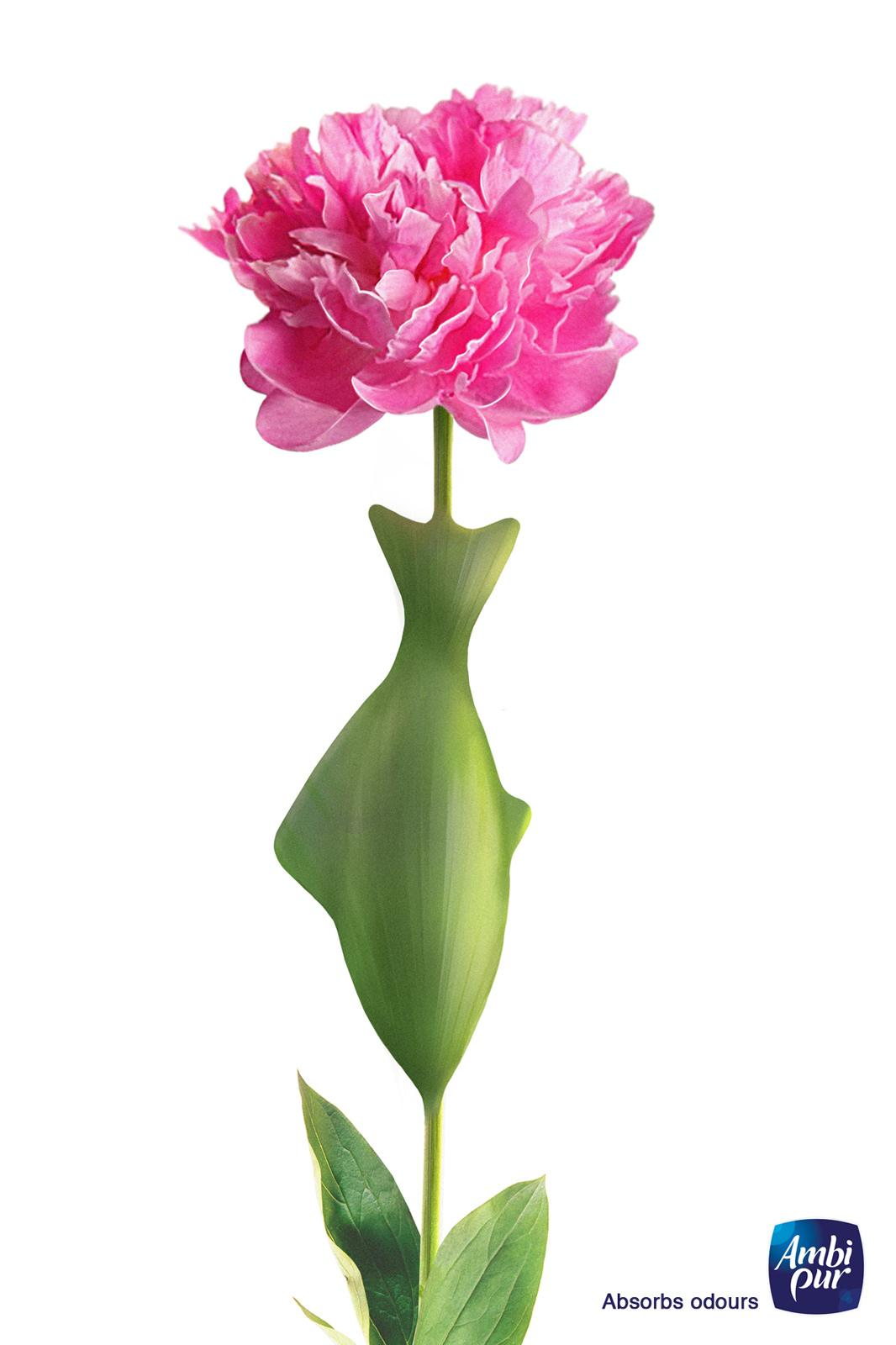 Ambi Pur Print Ad -  Absorbs Odours, Peony