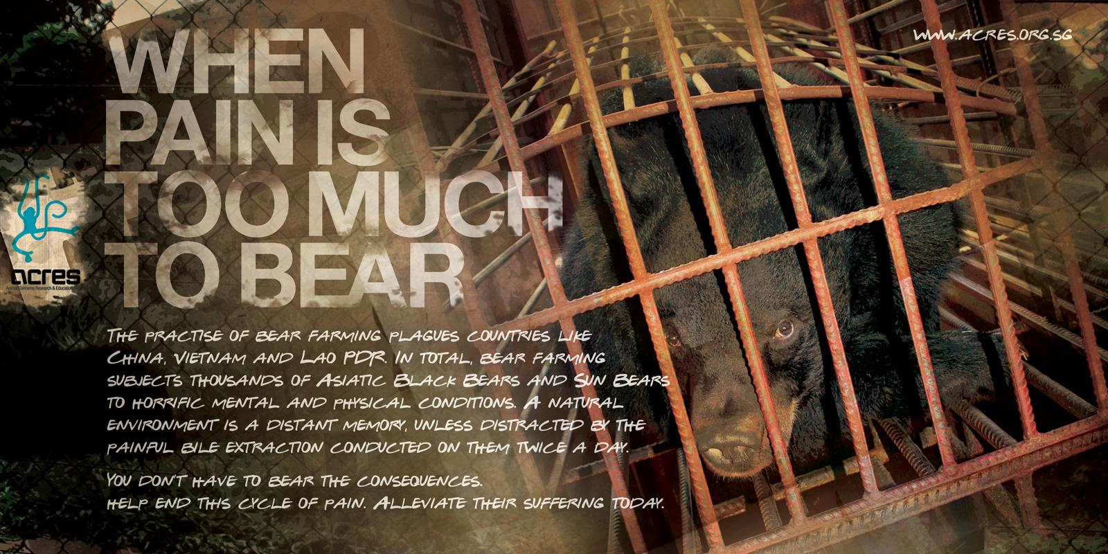 ACRES Print Ad -  Bear bile, 1