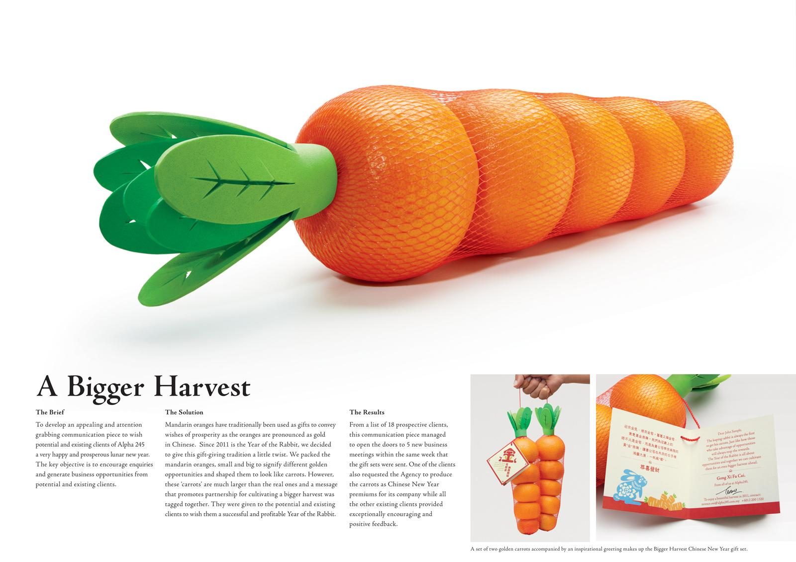 Alpha 245 Direct Ad -  A bigger harvest