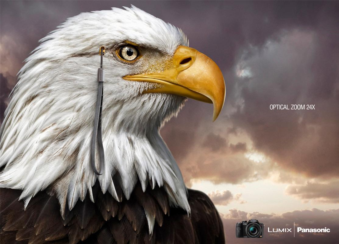 Panasonic Print Ad -  Eagle